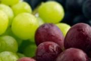Fino i zdravo: grožđe - voće careva!